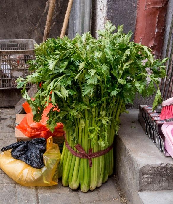 Big celery