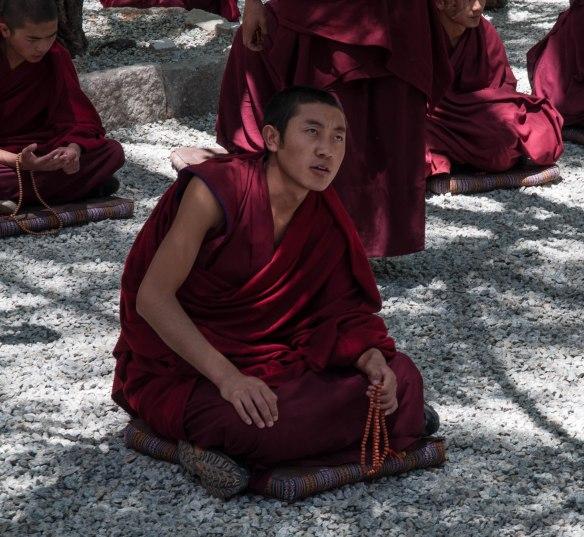 Junior monk debating
