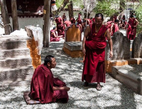 Debating monks of Sera Monastery