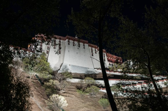 Looking up at the back of the Potala Palace at night