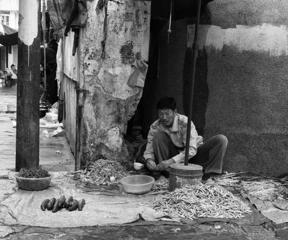 Vegetable hawker